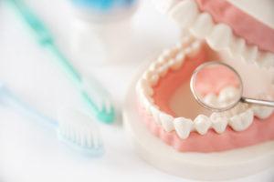 睡眠、栄養、噛み合わせスペシャリストな歯科医師による、健やかに美しく生きるための予防歯科からウェルエイジングまで